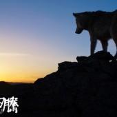 750px-Wolftotem-sunrise