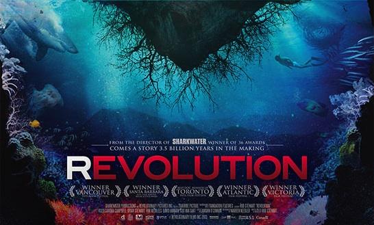 Revolution Post2
