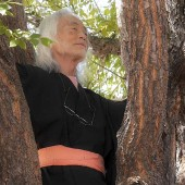 zen-dude-new-tight-tree