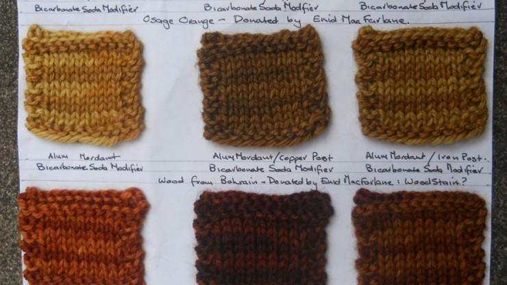 Handweavers&Spinners_dye_group_guild2